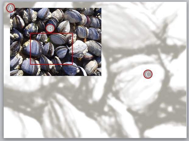 Quick Bilder eigener Hintergrund B9