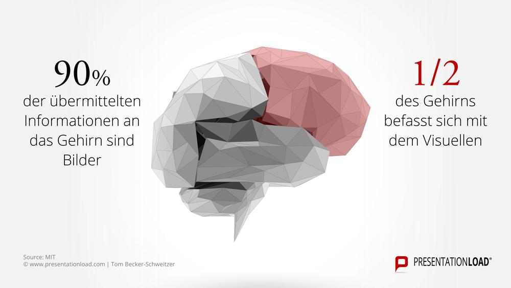 Großartig Gehirn Markierte Diagramm Galerie - Menschliche Anatomie ...